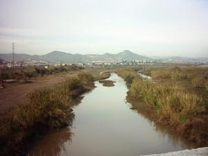 Aguas estancadas. El bajo Llobregat supera el límite legal de salinidad